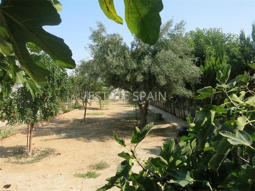 Коттедж в испании цена купить квартиру дом в дубае